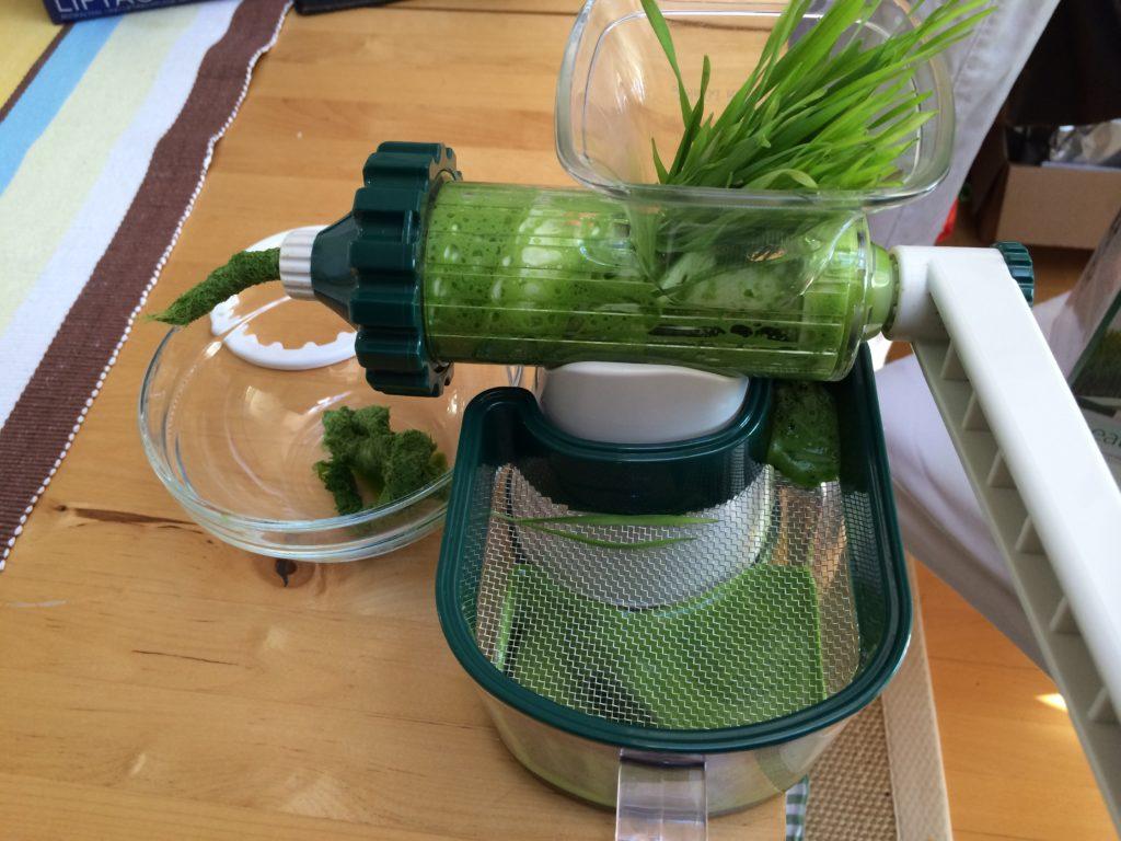 Fit und gesund mit Weizengras Saft